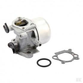Briggs & Stratton Karburátor 799871